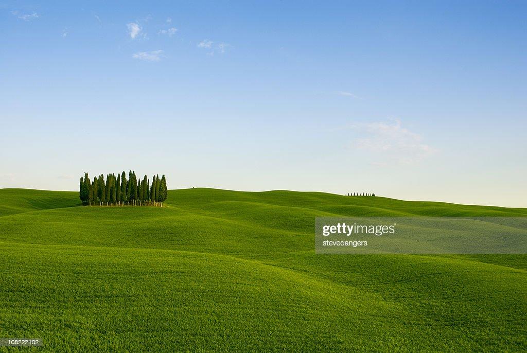 Toscana Val d'Orcia sfondo : Foto stock