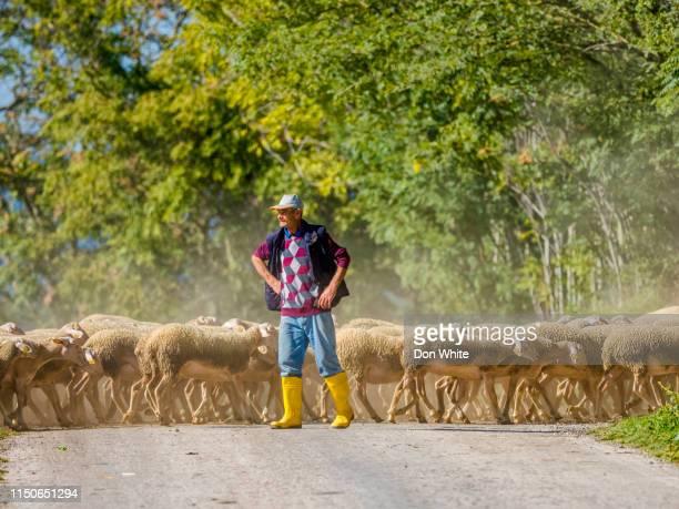 toscana y la región de umbría de italia - eden pastora fotografías e imágenes de stock