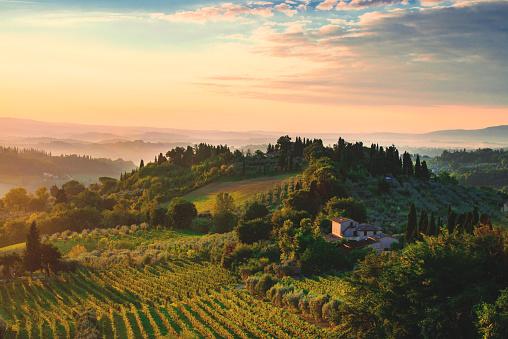 Tuscany dawn 1021054474