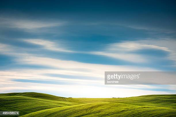 tuscany field - hill stock pictures, royalty-free photos & images