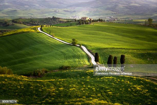 tuscany, fine art landscape - val d'orcia stock pictures, royalty-free photos & images