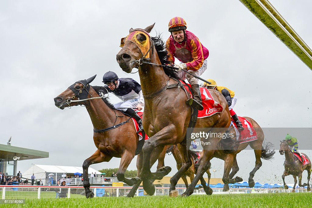 Tuscany Hero ridden by Craig Newitt wins GBG Concrete & Construction BM70 Handicap at Sale Racecourse on October 23, 2016 in Sale, Australia.