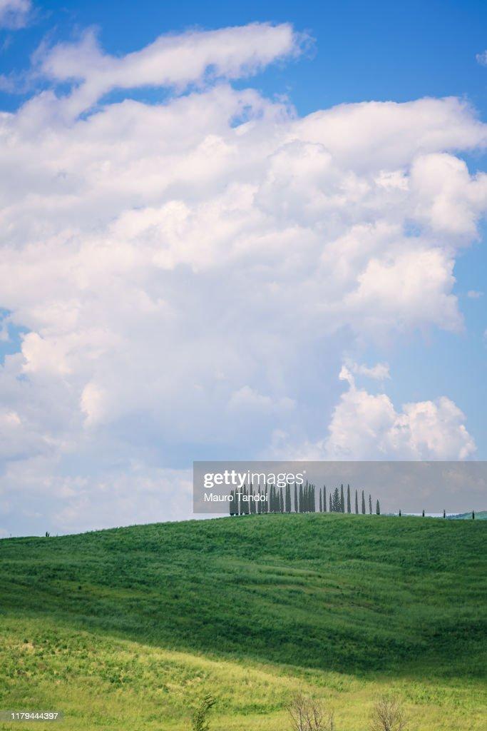 Tuscany Hills : Stock Photo