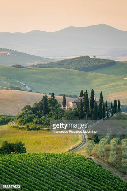 tuscany in the morning, italy - tuscany stock pictures, royalty-free photos & images
