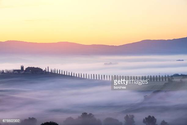 tuscany landscape at sunrise - italian cypress stock pictures, royalty-free photos & images