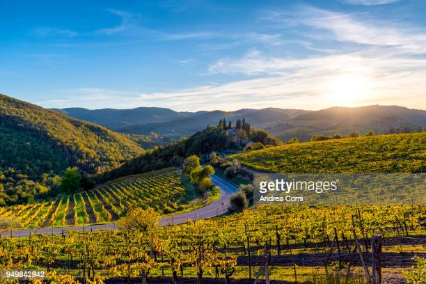 Tuscany landscape at sunset. Greve in Chianti, Florence, Tuscany
