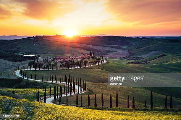 tuscany landscape at sunset - siena italy stock photos and pictures