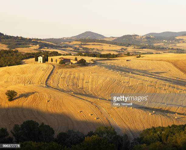 tuscany landscape in the summer - yeowell foto e immagini stock
