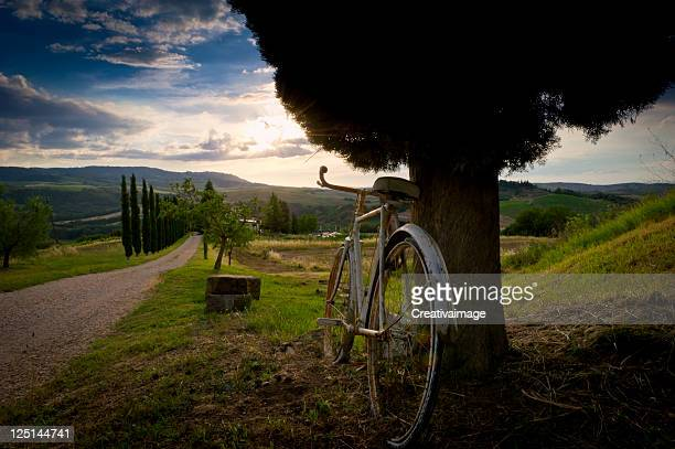 tuscany landscape - siena italy stock photos and pictures