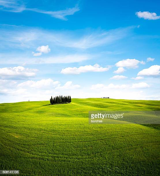tuscany landscape - hill stock pictures, royalty-free photos & images