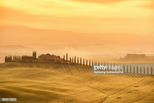 tuscany - landscape sunrise view, hills farm and meadow, toscana - italy - siena italy stock photos and pictures