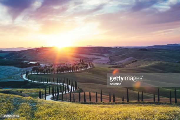 tuscany landscape with winding road - single track stock pictures, royalty-free photos & images