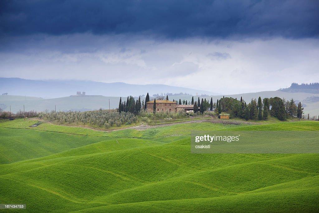 Toscana : Foto de stock