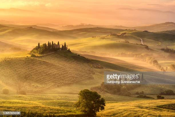 tuscany, rural sunrise landscape. countryside farm, cypresses trees, green field,italy, europe. - chianti region stock pictures, royalty-free photos & images