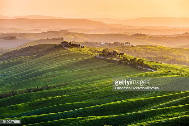 tuscany, springtime at sunset - chianti region stock photos and pictures
