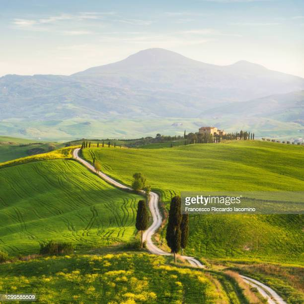 tuscany, springtime in the afternoon. country path road, green rolling hills and cypress trees - val d'orcia foto e immagini stock