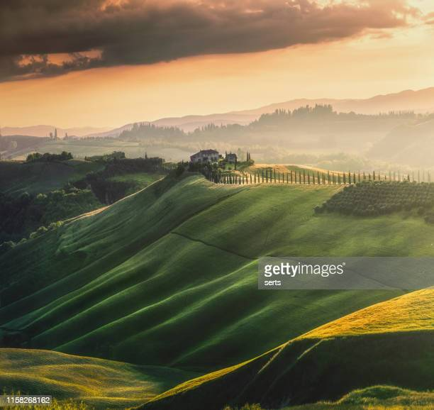 tuscany sunset landscape view of green hills fringed with cypress trees italy, europe - val d'orcia stock pictures, royalty-free photos & images