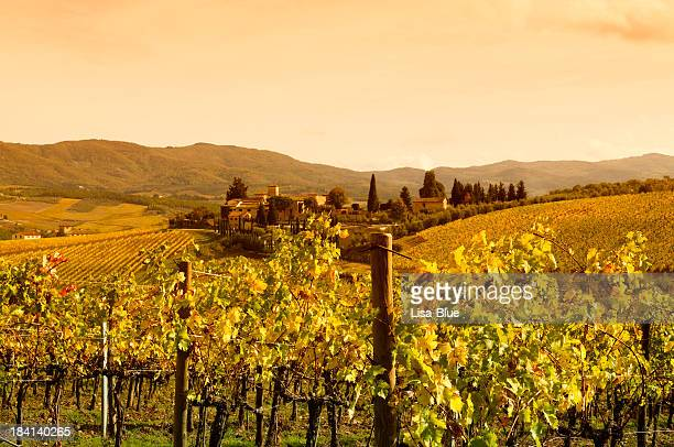 Tuscany Village and Vineyard in Fall at Sunset