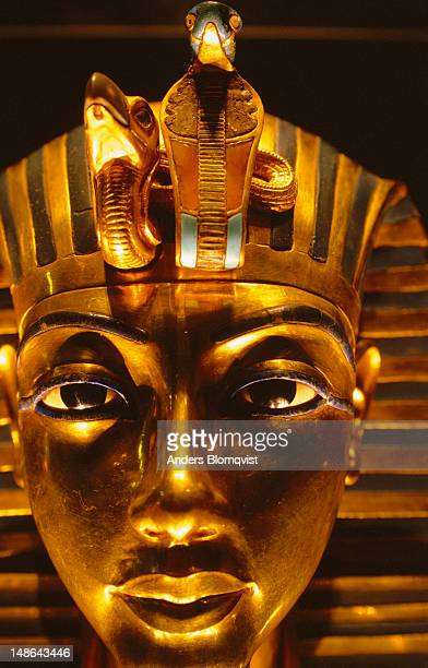 tutankhamun's exquisite death mask. made of beaten gold and inlaid with precious stones this most famous of archaeological treasures can be discovered at the egyptian museum. - antiquities stock pictures, royalty-free photos & images