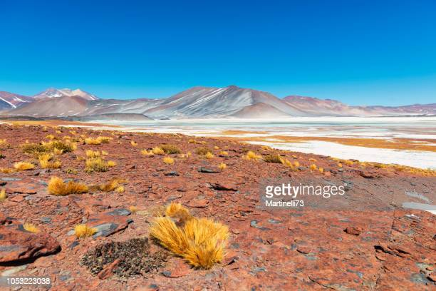 tuyajto lake - andes cordillera - atacama region - high up mountain - inhospitable - geology stock pictures, royalty-free photos & images