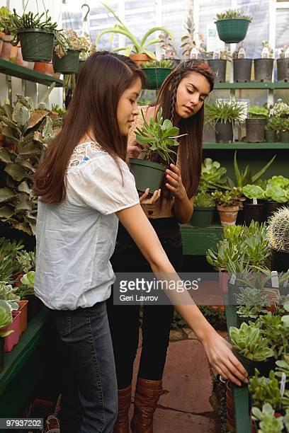 Tw women shopping at a plant nursery