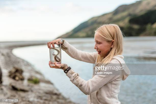 tween girl holding an eel in new zealand - nelson city new zealand stock pictures, royalty-free photos & images