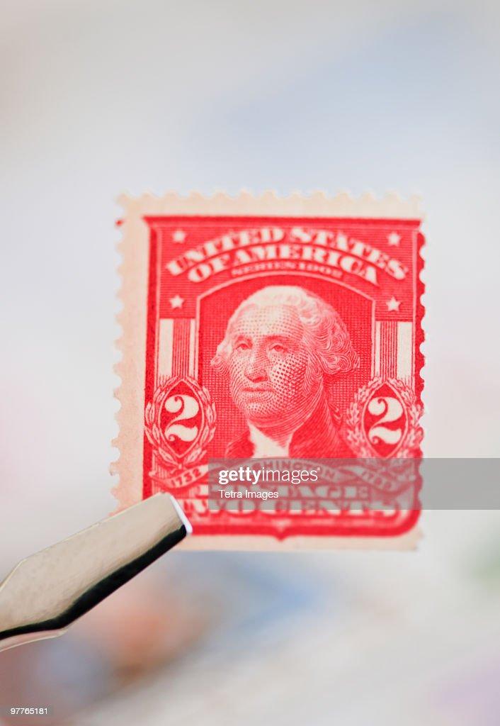 Tweezers holding stamp : Stock Photo