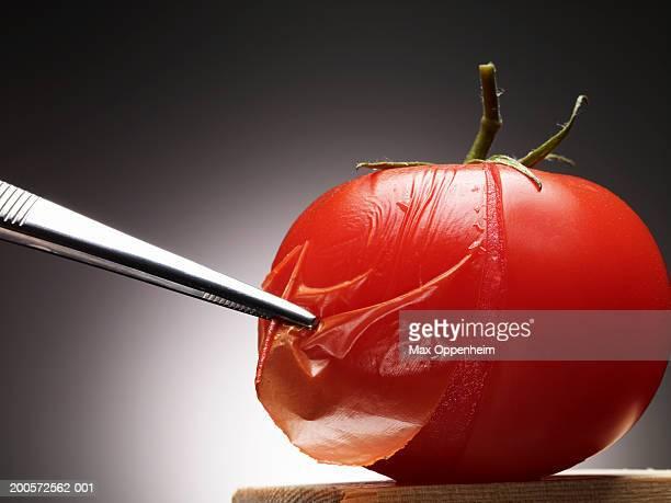 Tweezers removing skin on tomato