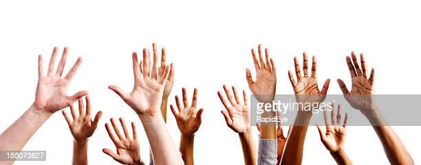 Twelve mixed hands raised in praise or joy against white