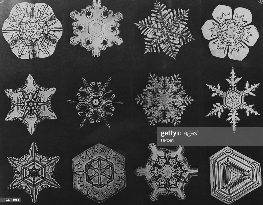 Twelve Snow Crystals : News Photo