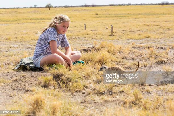 twelve year old girl looking at meerkats, kalahari desert, makgadikgadi salt pans, botswana - meerkat stock pictures, royalty-free photos & images