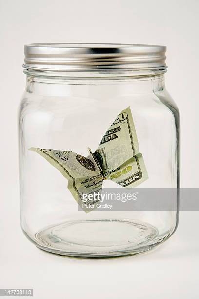 Twenty dollar butterfly in a glass jar