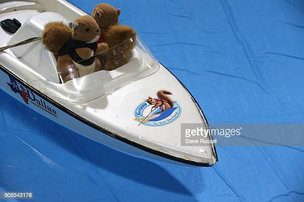 Twiggy's driver and spotter are also squirrels but just toys Twiggy the Water Skiing Squirrel gets in some practice runs before her shows at the...
