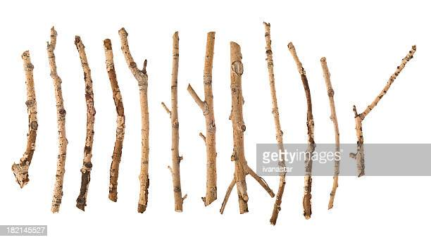 twigs and sticks - twijg stockfoto's en -beelden