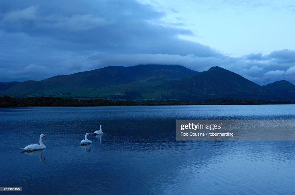 Twilight at Bassenthwaite Lake, Lake District National Park, Cumbria, England, United Kingdom, Europe : Stock Photo