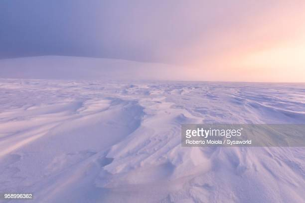 twilight on frozen landscape, lapland, finland - poolklimaat stockfoto's en -beelden