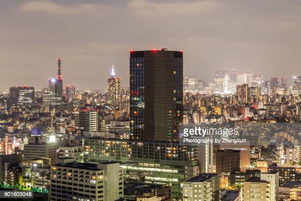 Twilight over Shinjuku business, shopping and entertainment district aerial view Tokyo, Japan.
