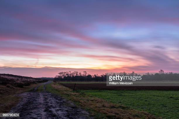 twilight path - william mevissen bildbanksfoton och bilder