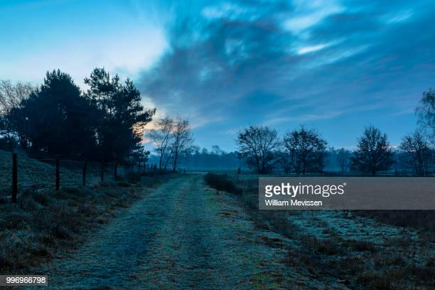 twilight path - william mevissen stock-fotos und bilder