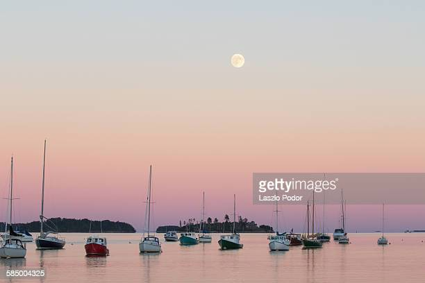 Twilight with moon in Mahone bay