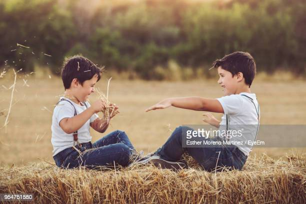 Twin Brothers Playing On Hay Bale