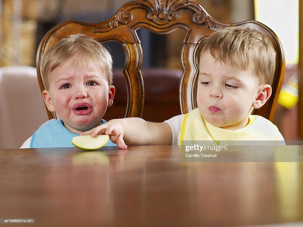 Twin brothers (18 months) sitting at table, one crying and looking at camera : Foto stock