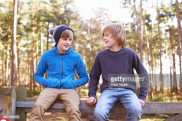 Twin brothers sitting on gate in forest