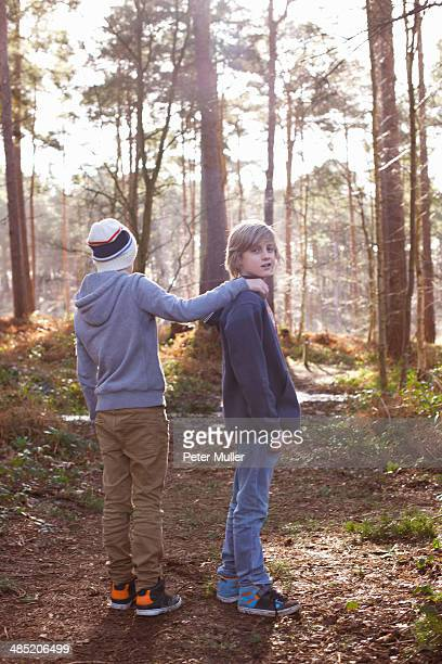 twin brothers standing together in woods - only boys stock photos and pictures
