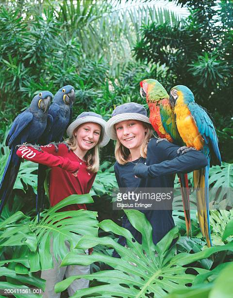 twin girls (10-12) with parrots (psittacidae), portrait - blasius erlinger stock pictures, royalty-free photos & images