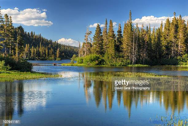 Twin Lakes Reflections, 9000Ft, Mammoth Lakes,