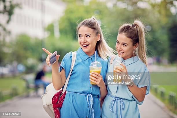 双子の姉妹が公園を歩いていると楽しい作り