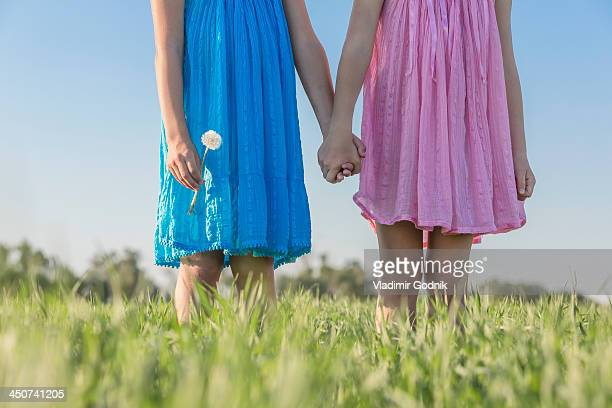 Twin sisters holding hands in a sunny field, low angle view