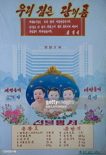 Twins and triplets statistics in maternity in North Korea on September 08 2008
