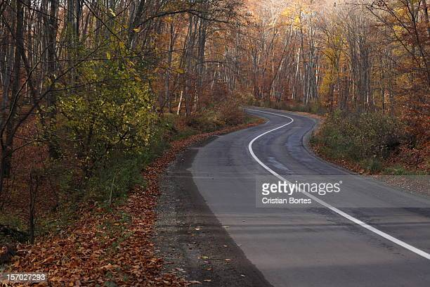 twisty road - bortes stock pictures, royalty-free photos & images